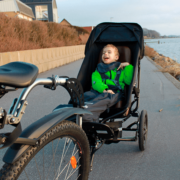 Happy Hubert out on a afternoon ride in the Delta bicycle trailer